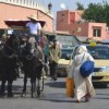 Thumbnail image for How to Get Around in Morocco