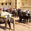 Thumbnail image for How to Travel in India