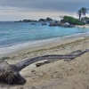 Thumbnail image for Colombia's Other Caribbean Coast