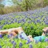 Thumbnail image for The Colors of Texas in Spring