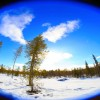 Thumbnail image for I Now Own a Piece of Finland – and I'm Headed There Today!