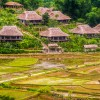 Thumbnail image for You'll Never Want to Leave This Ecolodge in Vietnam