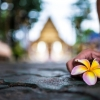 Thumbnail image for Thailand's Most Enchanting Environs