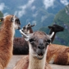 Thumbnail image for 10 Exotic Destinations Around the World