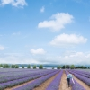 Thumbnail image for Hokkaido Monsoon