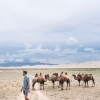 Thumbnail image for How to Choose a Gobi Desert Tour in Mongolia