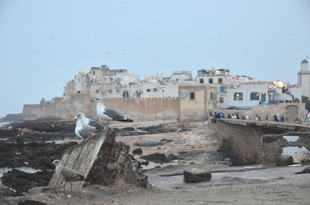 Photo of Essaouira, Morocco