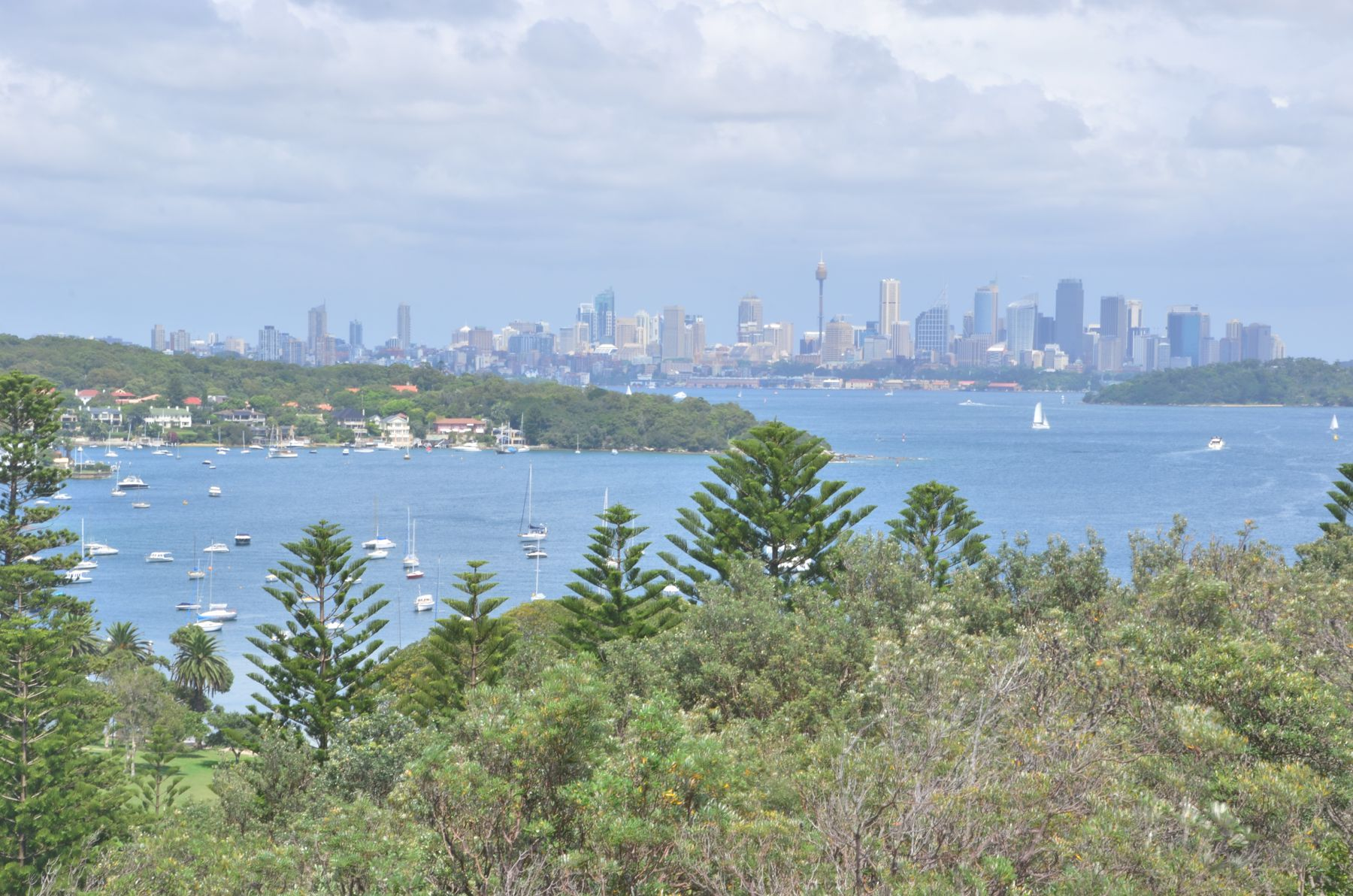 Sydney as seen from Watsons Bay