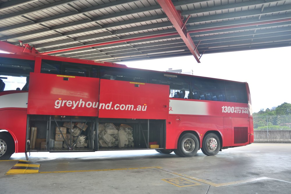 Coach from Greyhound Australia