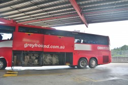 Greyhound Australia Bus