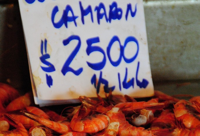 Shrimp in Chile