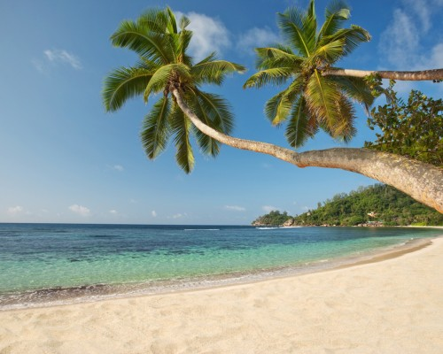 Web Baie Lazare Beach 500x400 Exploring Paradise: The Seychelles Islands