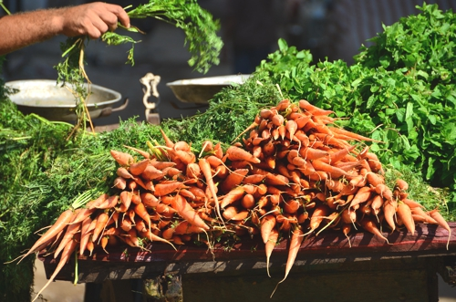 Carrots in Cairo