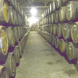 Barrels of Port Wine in Porto Portugal