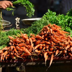Carrots at Market in Old Cairo Egypt