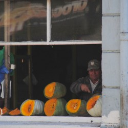 Melons in Valparaíso Chile