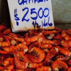 Shrimp in Santiago Chile
