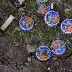 Tiger Beer Bottle Caps