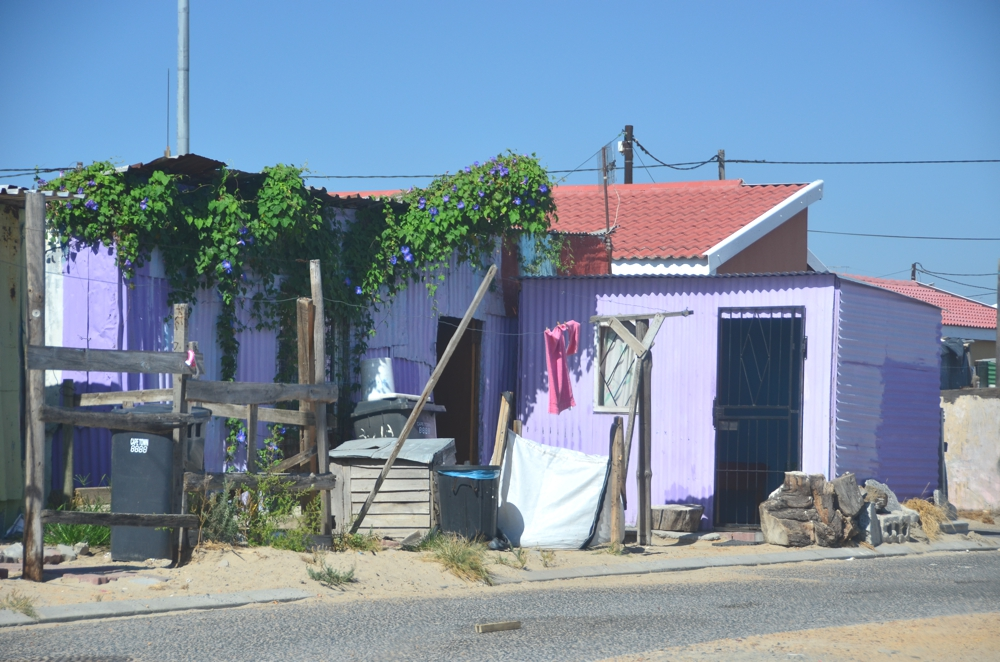 In spite of Khayelitsha's poverty, many elements of beauty exist