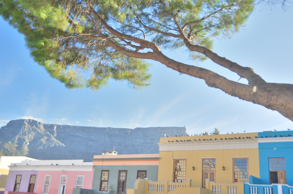 The colorful houses of Bo Kaap, with Table Mountain rising in the background