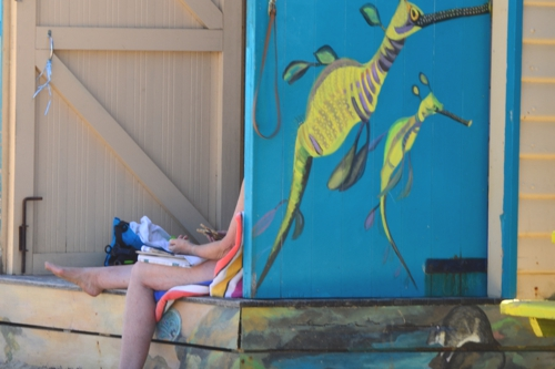 The kitschy bathing boxes are quintessentially Australian, both in their design and their very existence