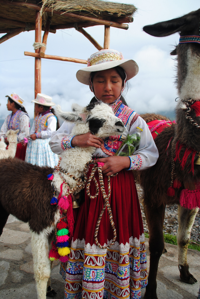 A sweet moment between an indigenous girl and her llama in Peru's Colca Valley