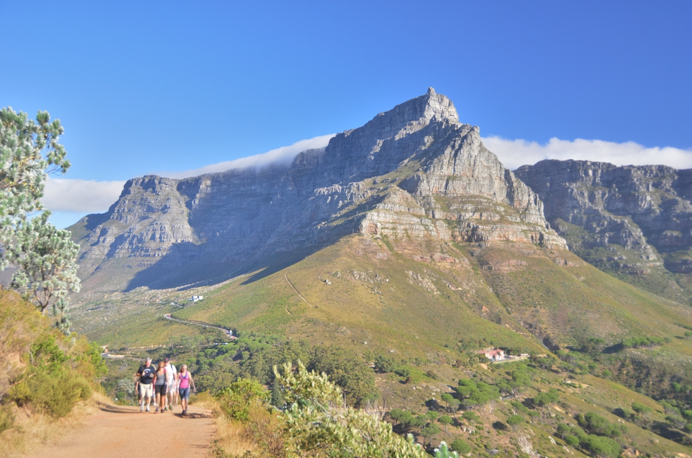 Table Mountain towers over everything in Cape Town, even from halfway up Lion's Head