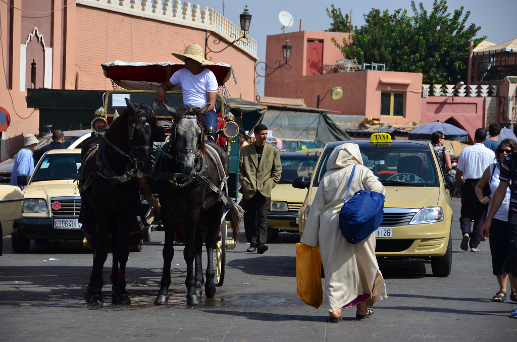 Taxi Horse and Woman in Marrakech Morocco The Best of Morocco in 10 Days