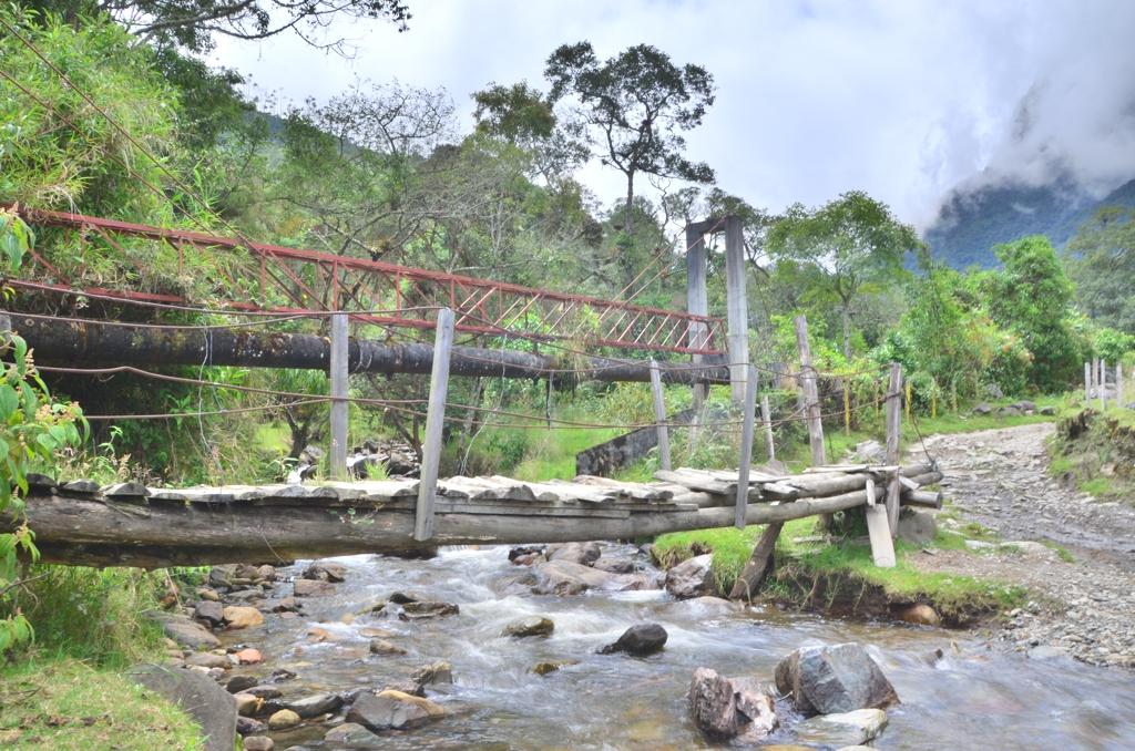 Valle del Cocora 6 Colombias Dreamlike Valle del Cocora