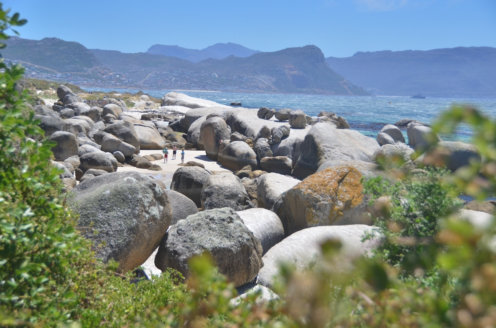 They call it Boulders Beach for a reason