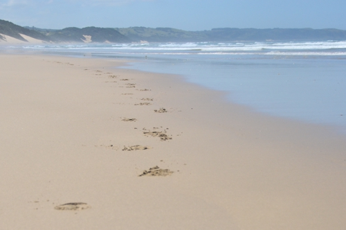 Leave your footsteps on Chintsa Beach – not many have!