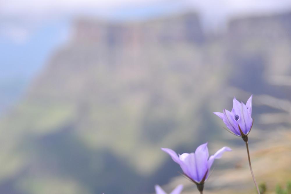Drakensberg-South-Africa