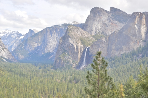 Yosemite is stunning from the very first view you get of it, which will likely be just past the Wawona Tunnel