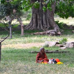 Anuradhapura Beggar