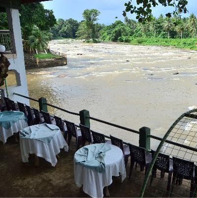 Elephant restaurant