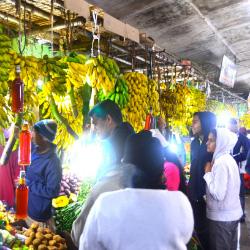 Sri-Lanka-Bananas