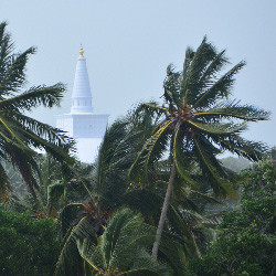 Sri Lanka Stupa