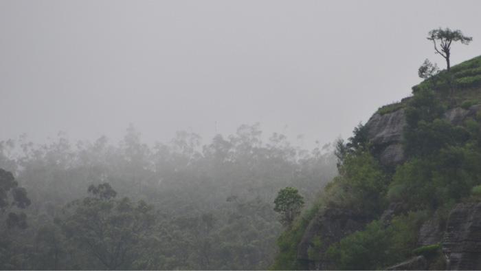 Sri-Lanka-Tea-Area
