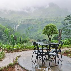 Sri-Lanka-Tea-Room