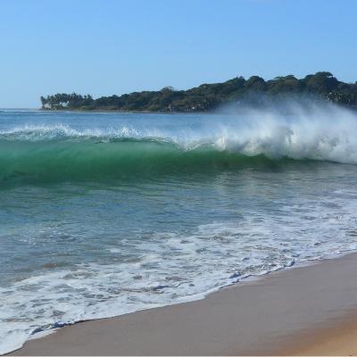 Arugam Bay wave