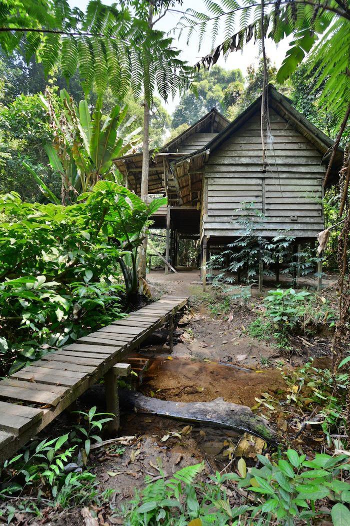 Lubuk Baji Camp in Borneo