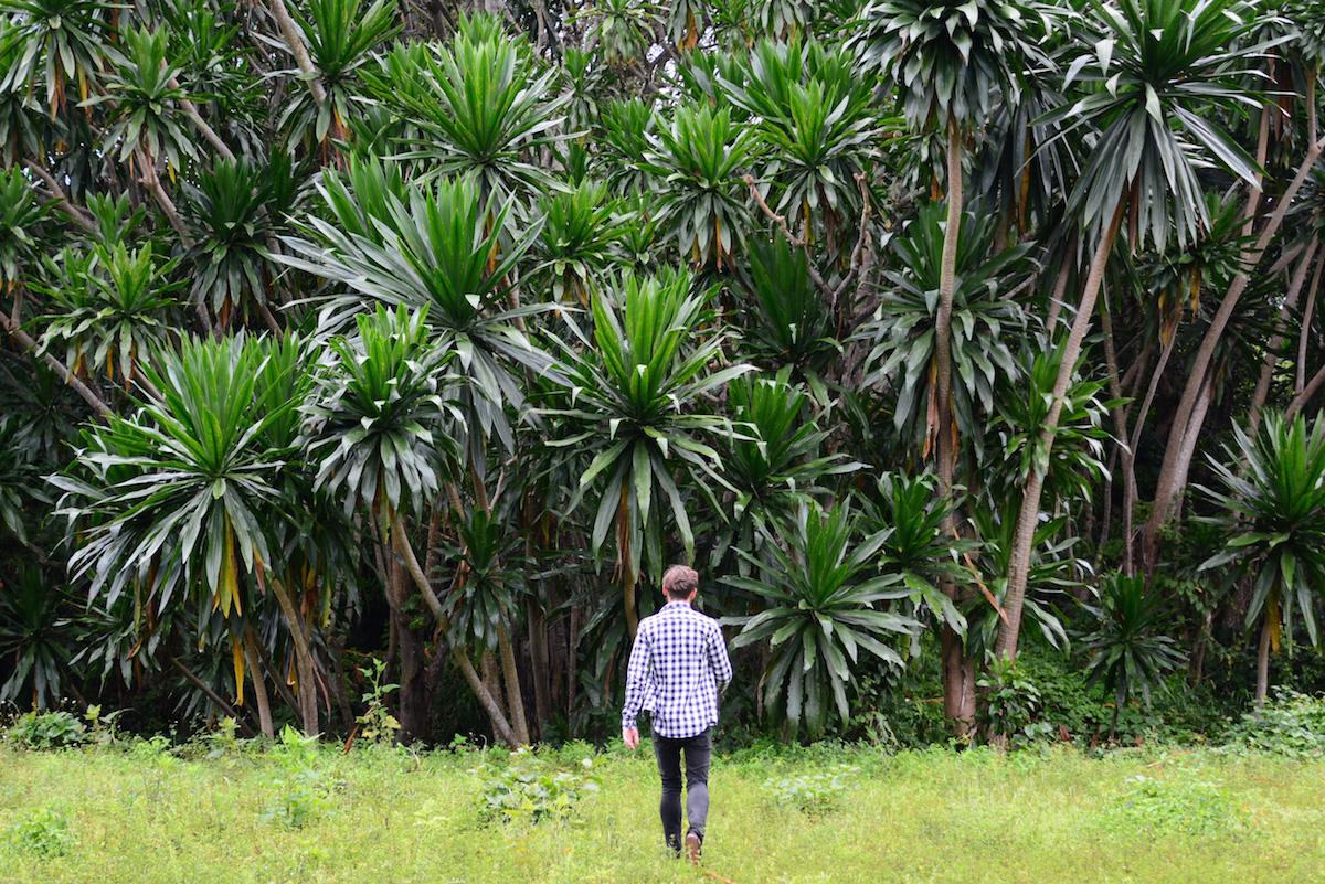 Robert Schrader in Rwanda