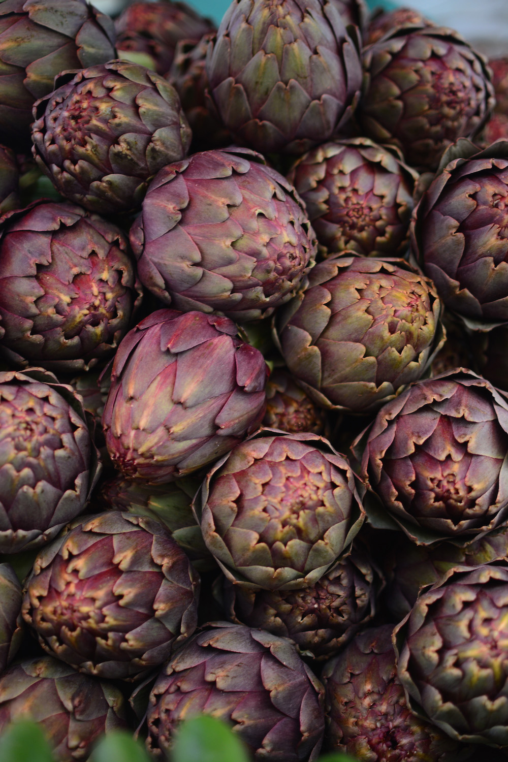 Artichokes at Carmel Market in Jaffa