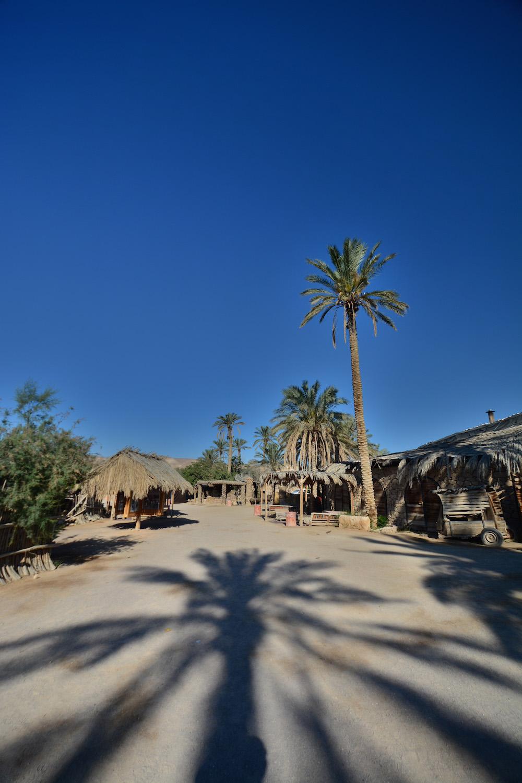 Desert lodging: Kfar Hankodim