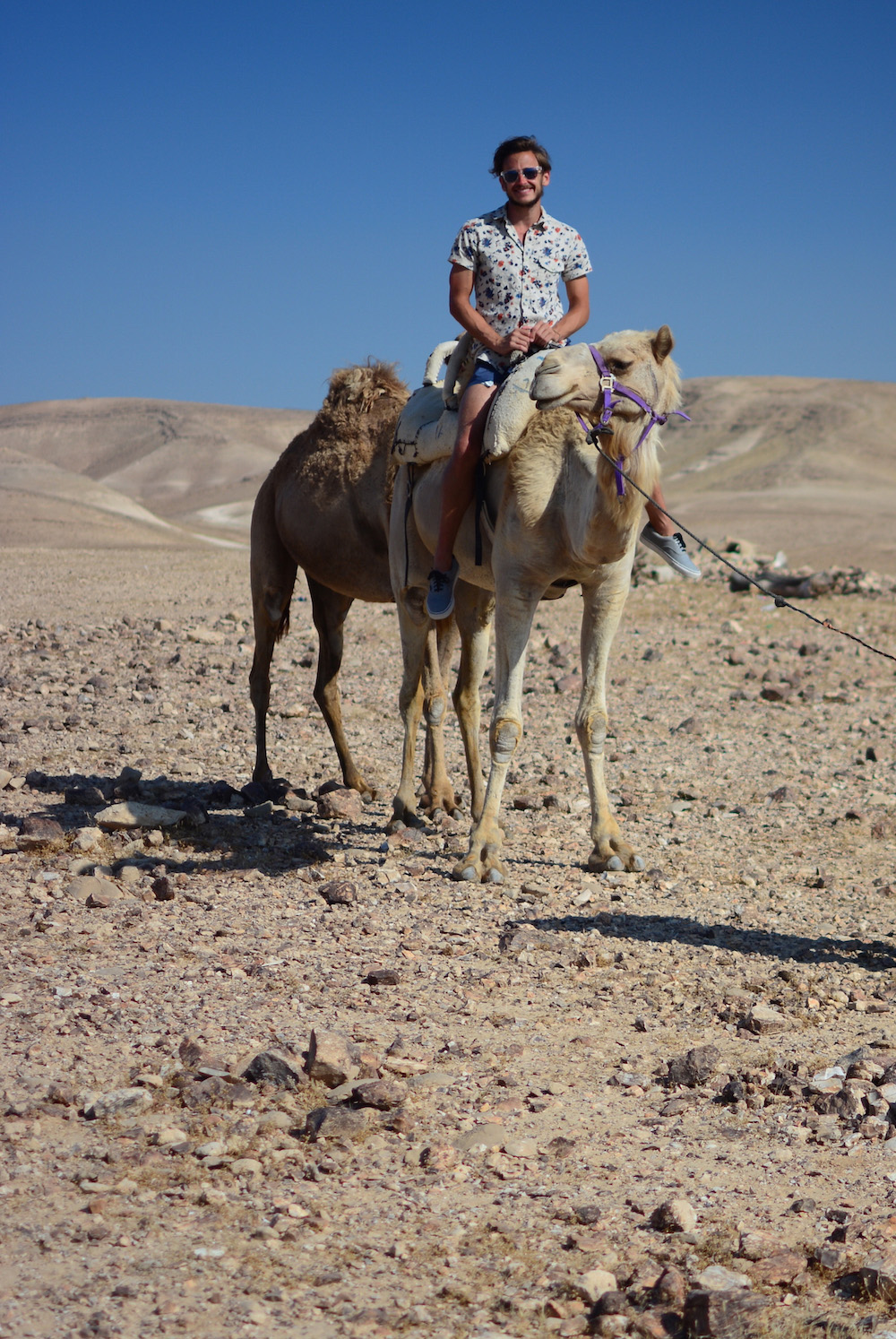Robert Schrader on a camel in Judean Desert