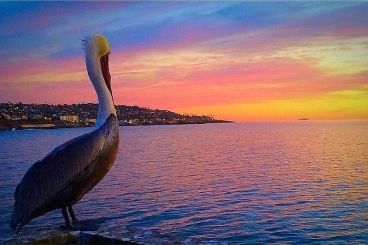 San Diego Seaside