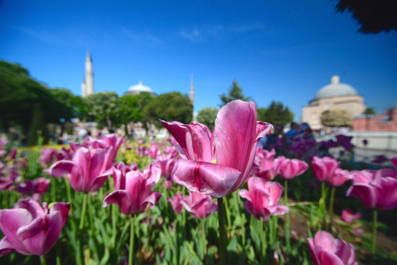 Hagia Sofia Church in Istanbul