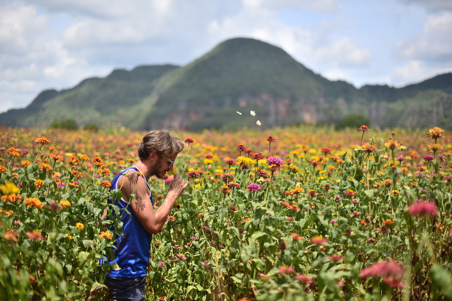 Cuba travel pictures frolicking in field of flowers