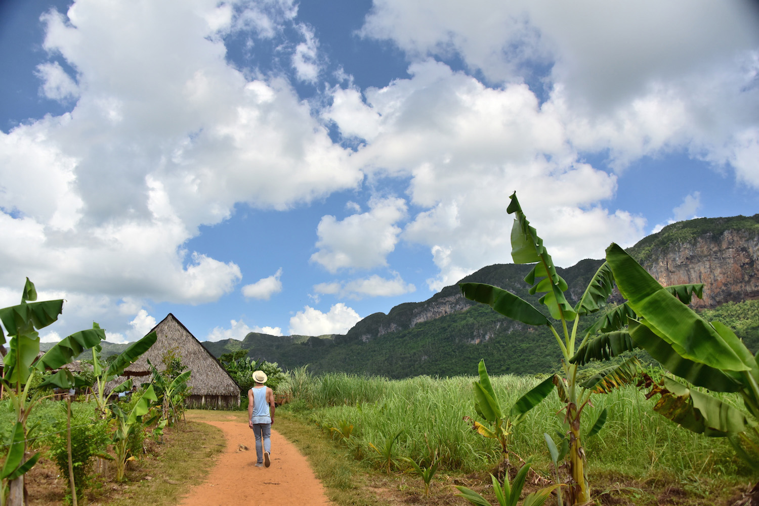 When in Cuba, Take a Puff on Those Cigars, Viñales Style