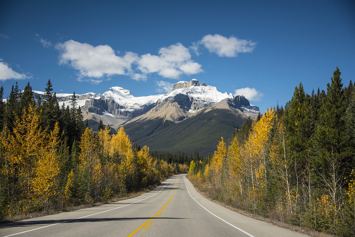 Road in Banff, Alberta